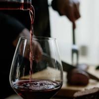 Organic and Sustainable Wine Tasting