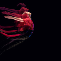 Texas Theatre and Dance presents Fall for Dance
