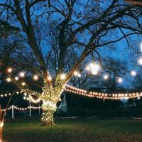 Winter Solstice Festival