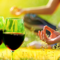Vinyasa and Vino: Red Wines for the holidays