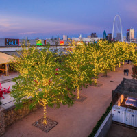 Trinity Groves presents Holiday Cocktail Crawl