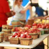 produce farmers market