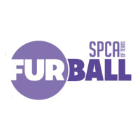 Fur Ball logo