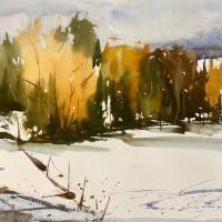 Southwestern Watercolor Society Exhibition