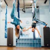Blue Feather aerial yoga