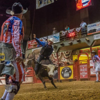 Stockyards Championship Rodeo