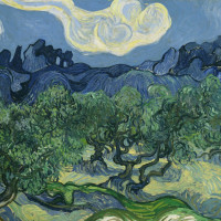 Vincent van Gogh, The Olive Trees, 1889, oil on canvas