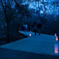 Houston Arboretum presents Sip & Stroll