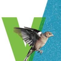 Vinkensport, or The Finch Opera