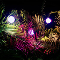 Oak Cliff Cultural Center presents Glow Forest