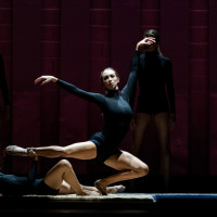 Avant Chamber Ballet presents Still Growing