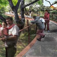 Skywalk at land bridge rendering