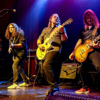 Desperado Eagles Tribute