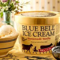 Blue Bell Homemade Vanilla