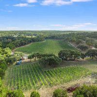Limestone Terrace Winery Wimberley Hill Country