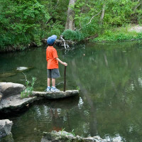 A child stands on a rock formation, holding a walking stick and looking over a river