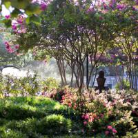 Lauren's Garden Houston