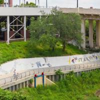 Biking and Birding White Oak Bayou - Houston Bird Week