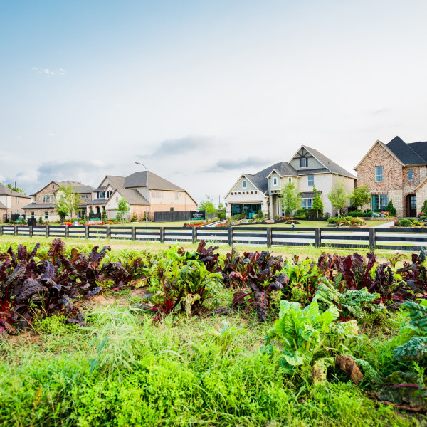 Lush Houston-area 'agrihood' grows with new land and affordable homes