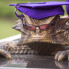 Arden Ward: TCU climbs the charts in prestigious new U.S. News & World Report college rankings