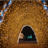 Katie Friel: Austin drive-thru and walkable holiday light displays to keep spirits bright