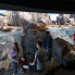 Steven Devadanam: Meet the charismatic new residents splashing into the Houston Zoo