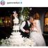 Stephanie Allmon Merry: Gwen Stefani and Blake Shelton ring up top Dallas planner, baker, DJ for glamorous wedding