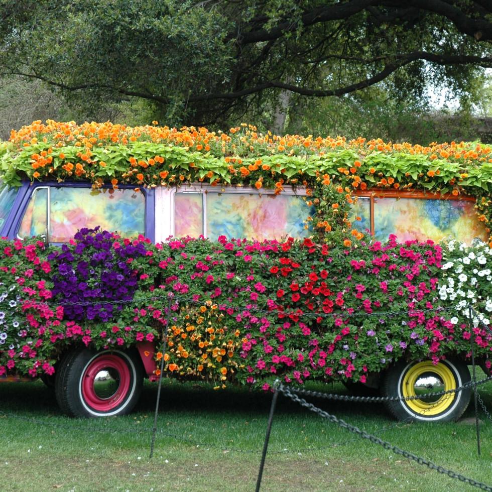 Dallas Arboretum and Botanical Garden presents Dallas Blooms: Flower Power