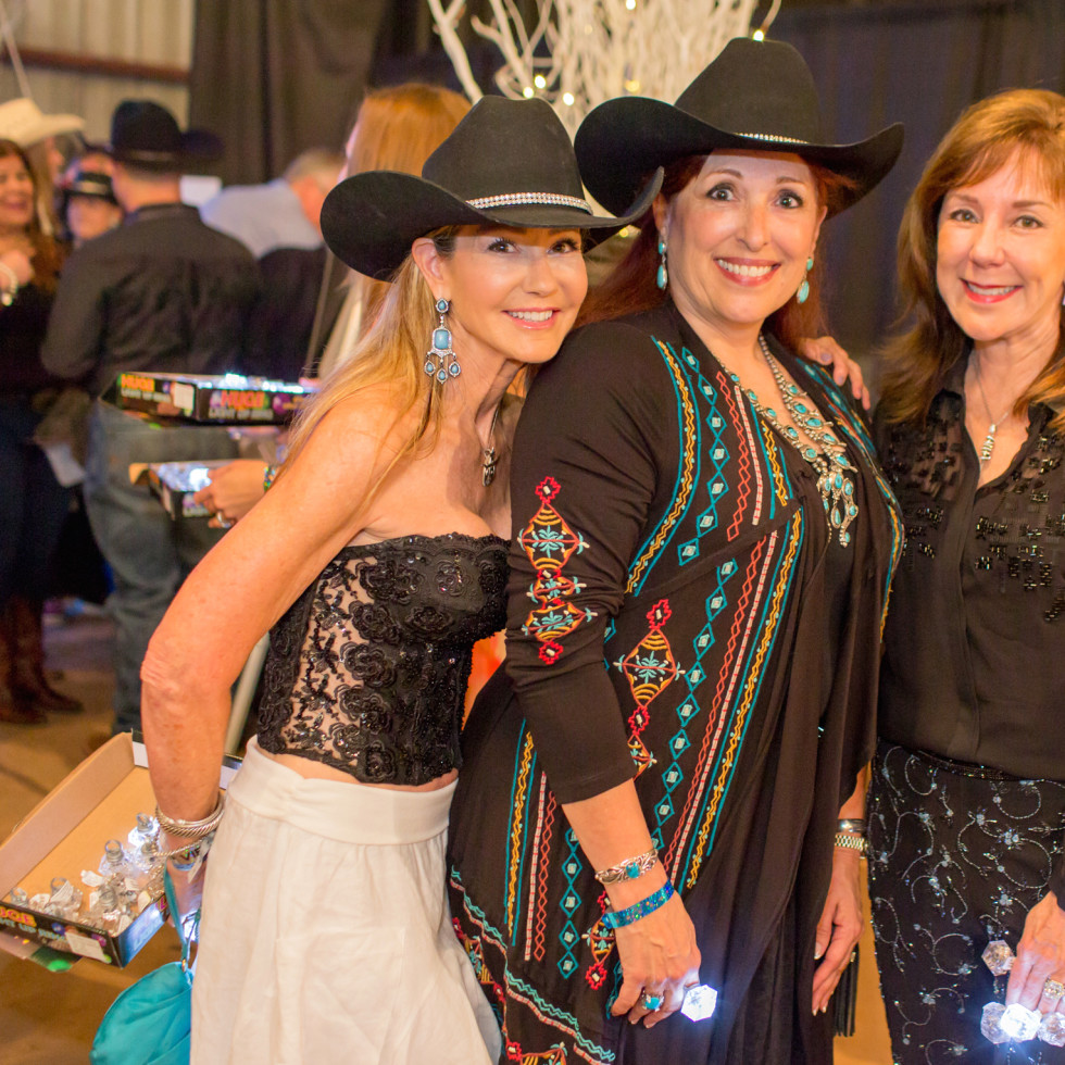 Houston, Cattle Barron's Ball 2017, May 2017, Patti Murphy, Sara Parr, Elizabeth Stein
