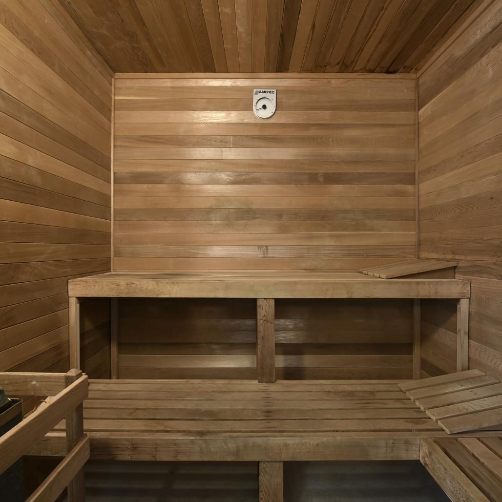 2518 El Greco Cove Austin house for sale sauna