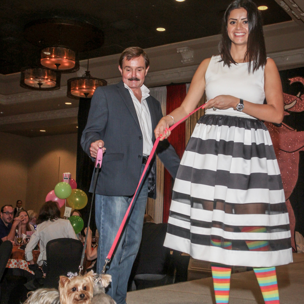 Citizens for Animal Protection 6/16