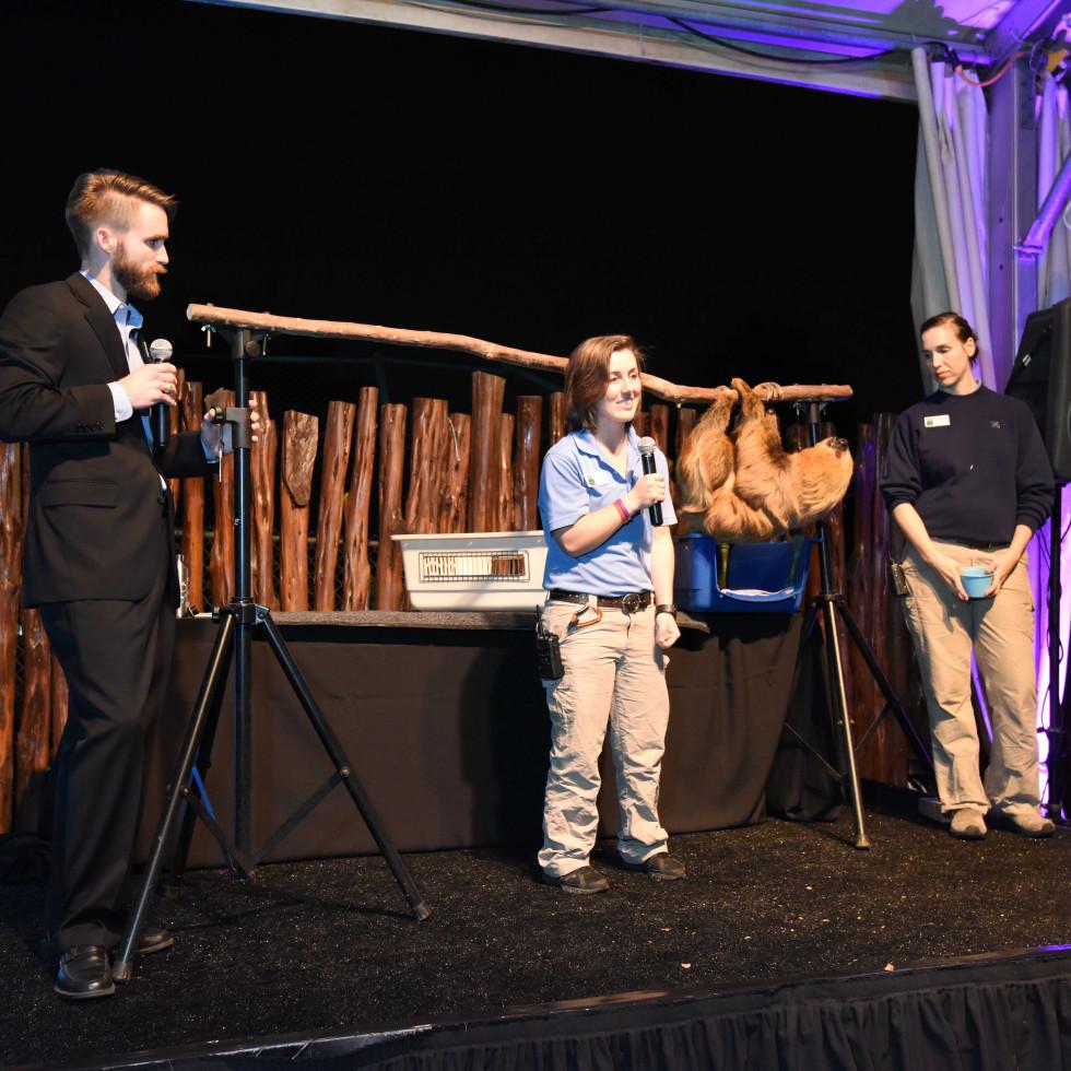 Houston Zoo Ambassadors Gala Curly the sloth