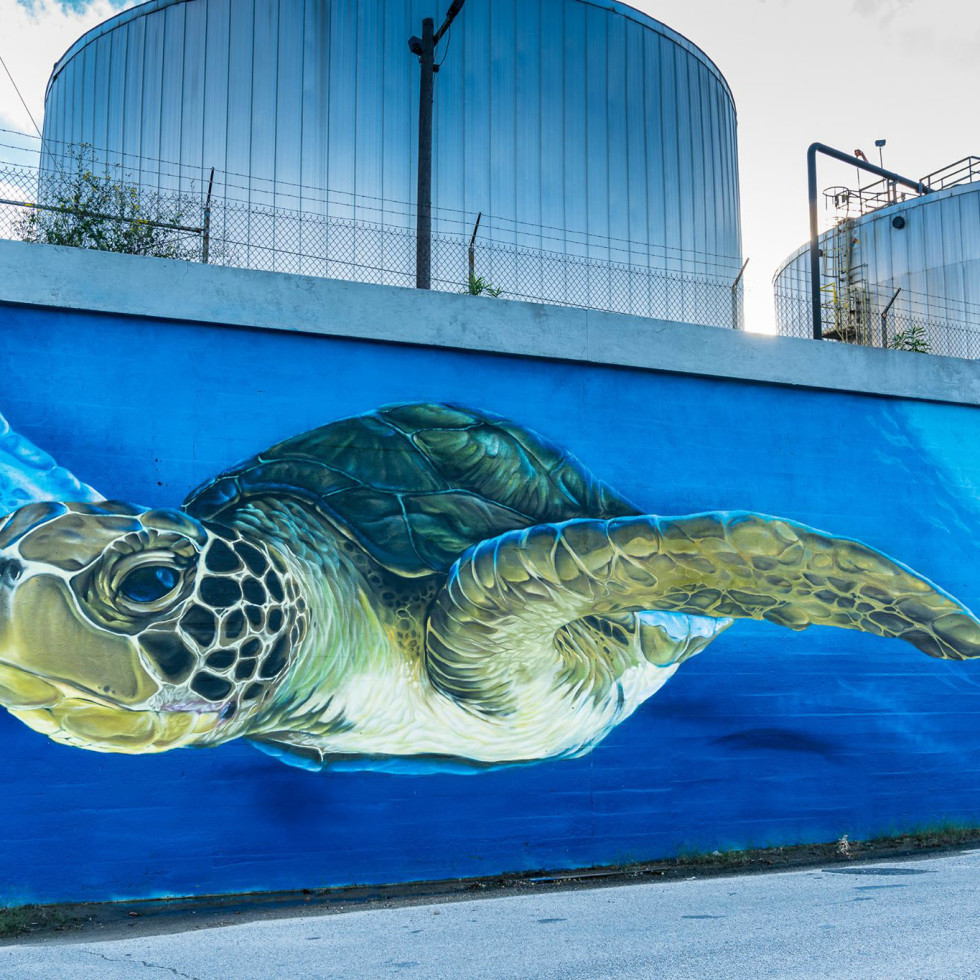 Turtle Soup downtown houston art mural turtle
