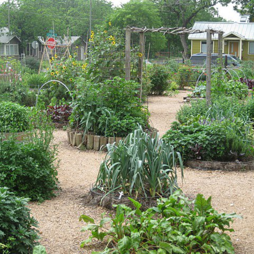 austin photo: places_food_eastside_cafe_garden