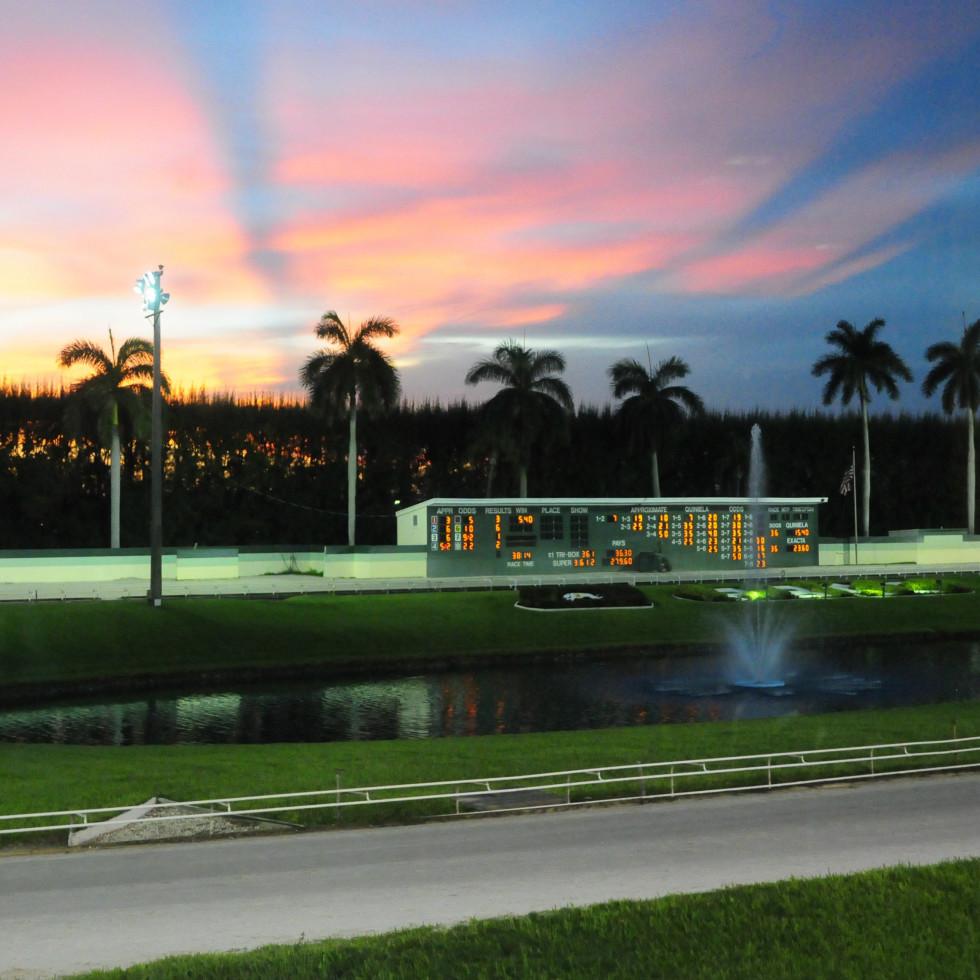 Travel Palm Beach - Palm Beach Kennel Club
