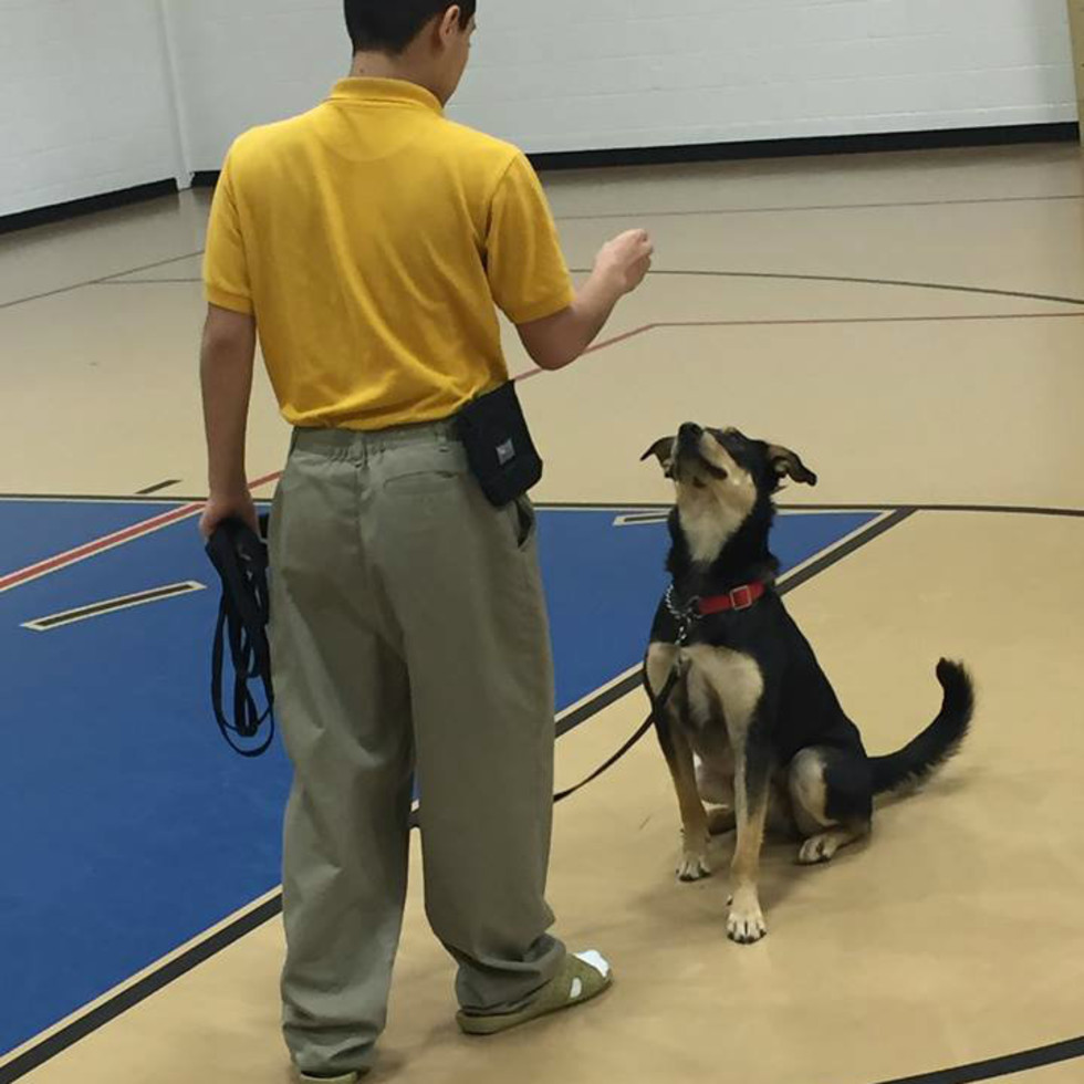 Youth With Faces PREP dog training program teaches patience, responsibility, empathy and partnership