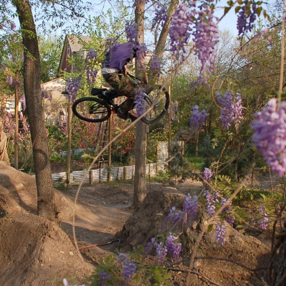 Austin Photo Set: Places_unique_austin_9th_street_dirt_jumps_flowers