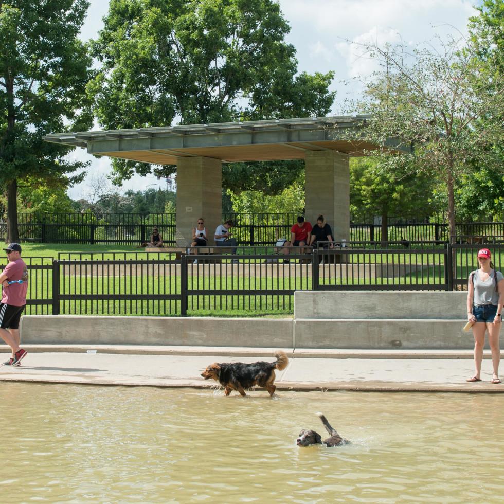 Johnny Steele Dog Park Allen Parkway