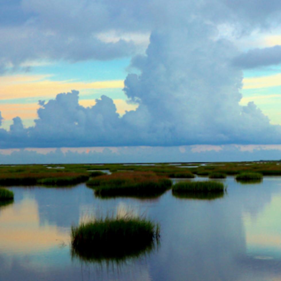 Galveston Bay water