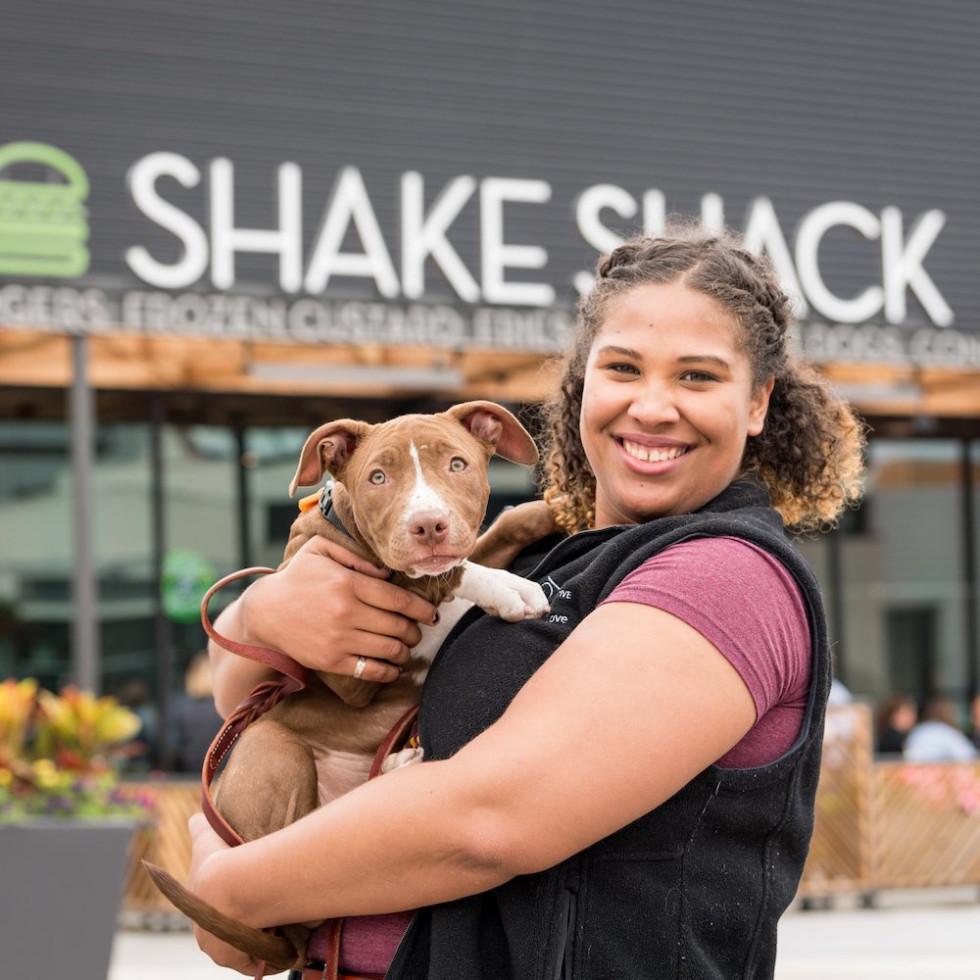 Houston Pets Alive Shake Shack Tuesday Fundraisers