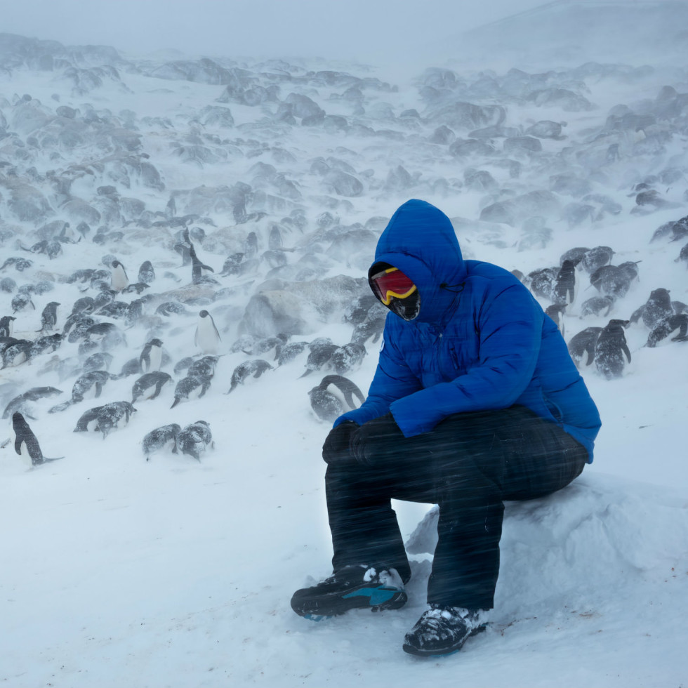 Behind the scenes of DisneyNature's Penguins