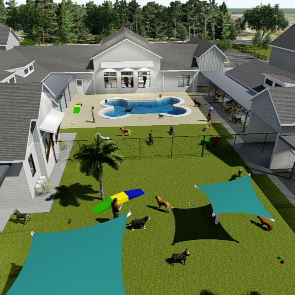 pet paradise georgetown rendering