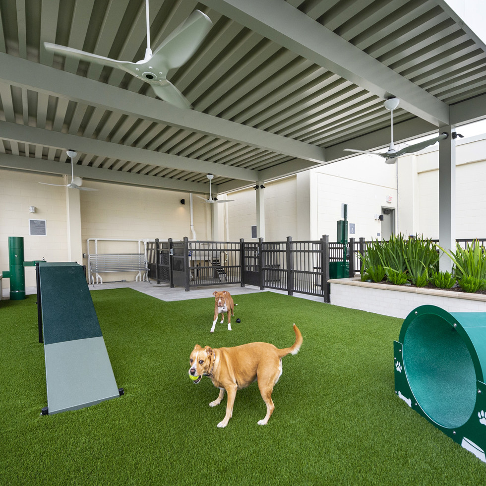 The McAdams Memorial City pet park