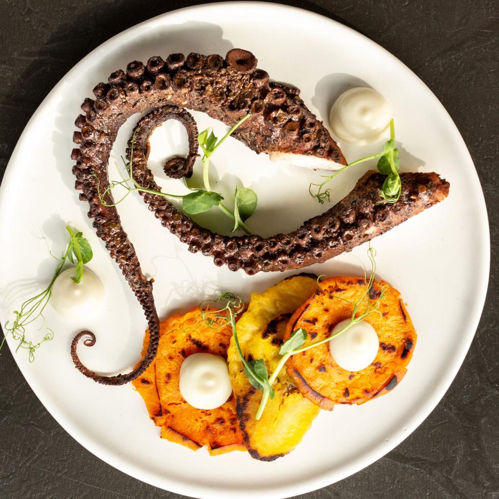 Mutiny Wine Room braised jerk Spanish octopus