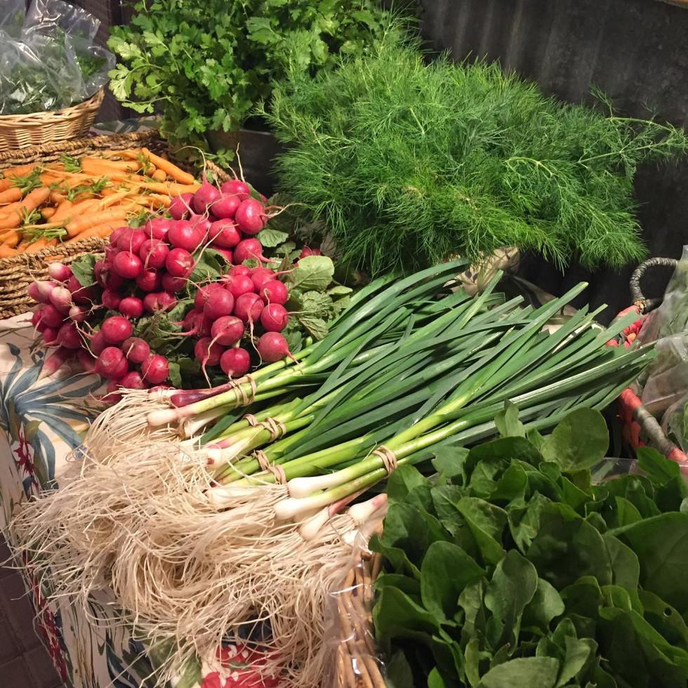Boggy Creek Farm vegetables farmers market