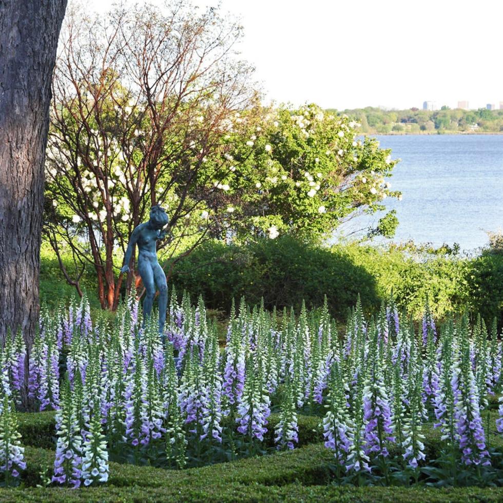 Dallas Arboretum bluebonnets lake