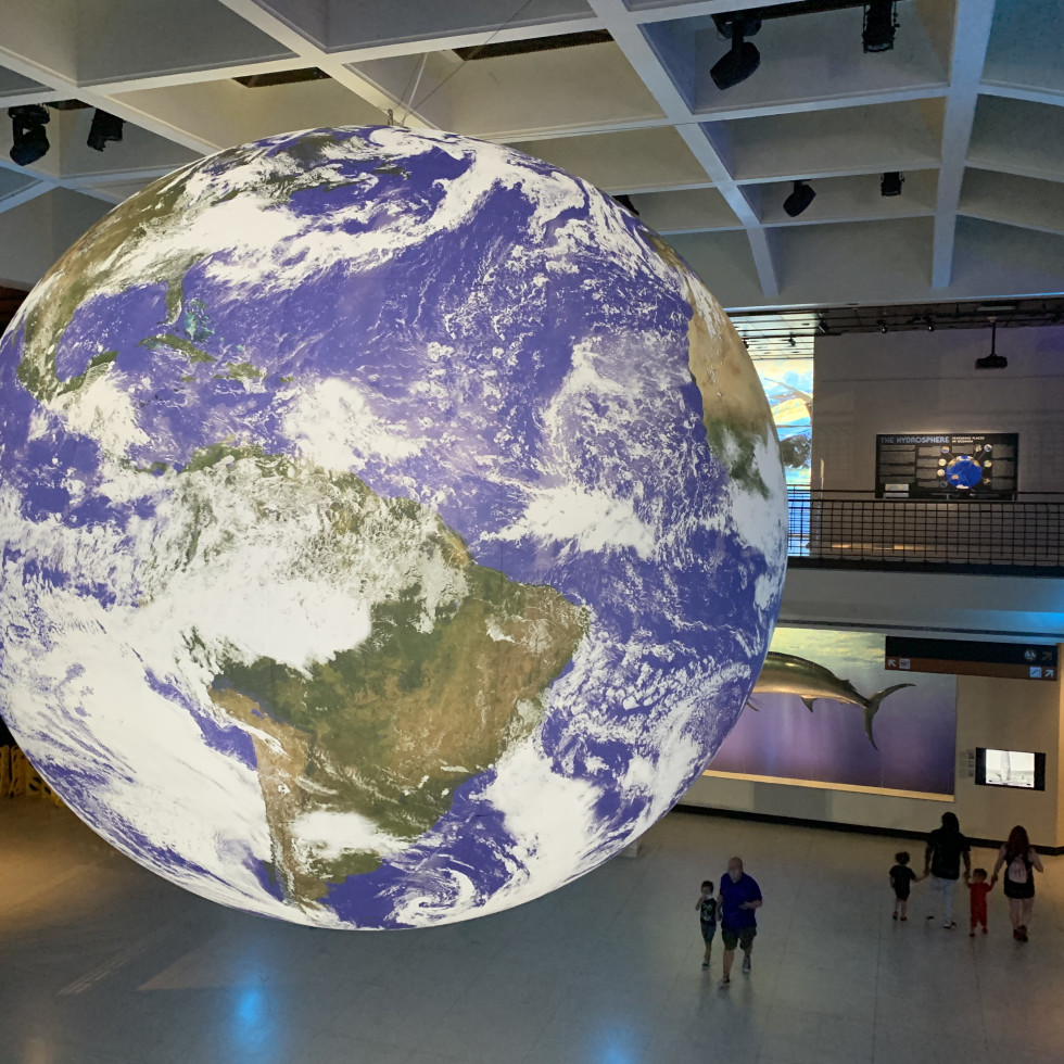 HMNS: Gaia-Earth