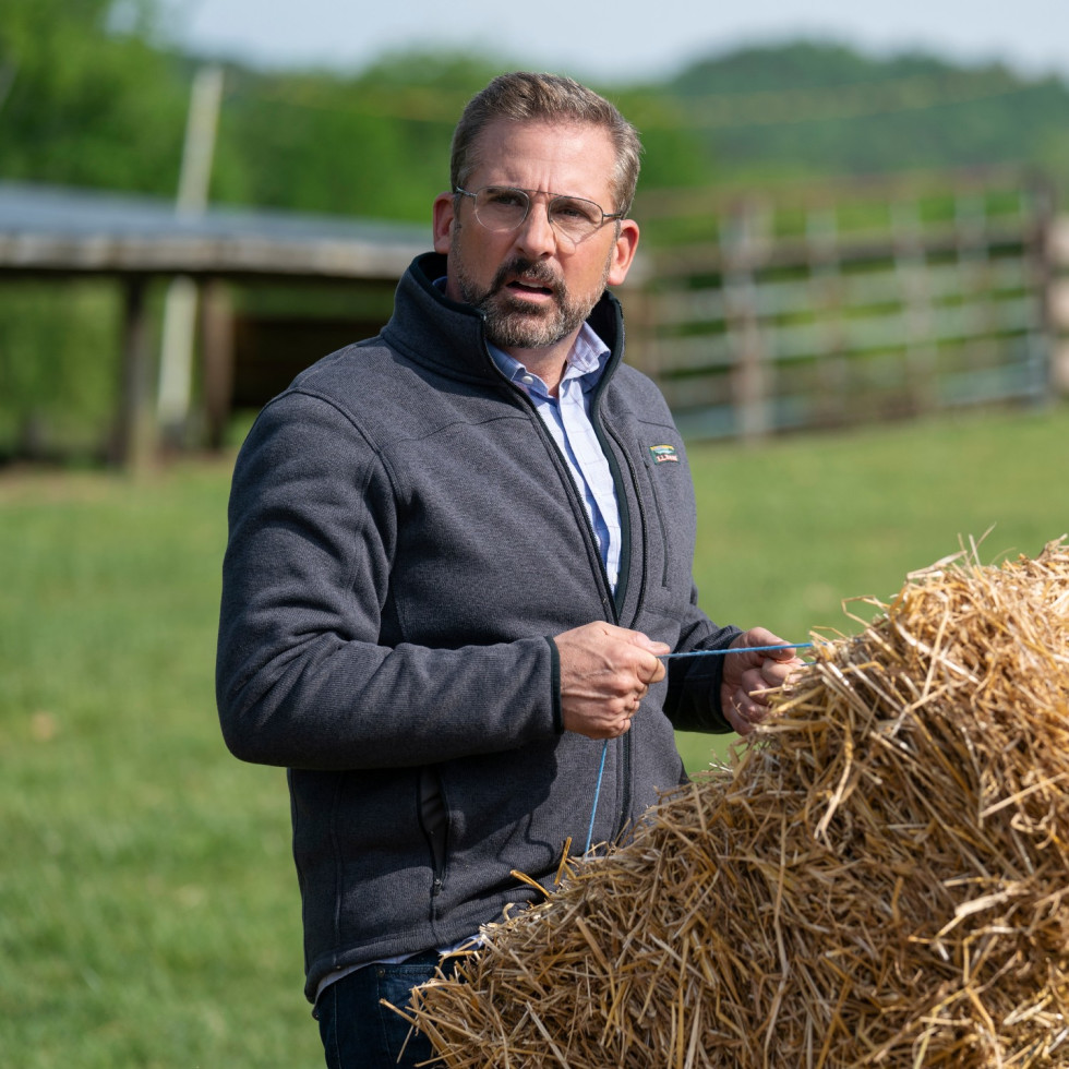 Steve Carell in Irresistible