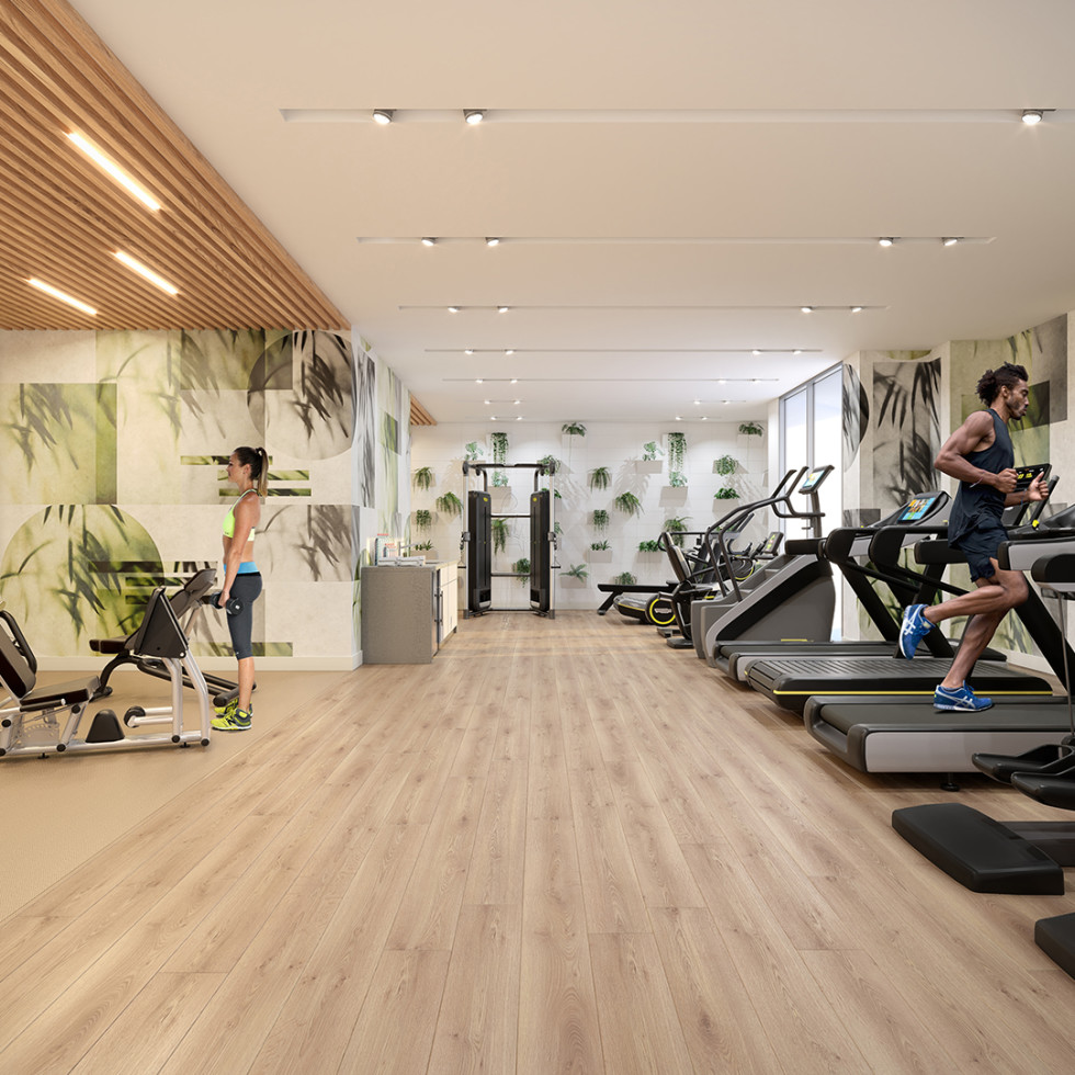 The Parklane gym