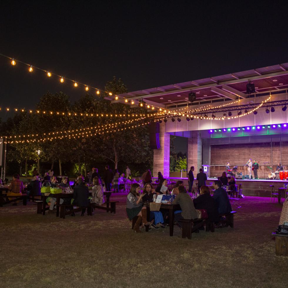 Buffalo Bayou Park picnic fifth anniversary